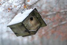 """Home Sweet Home"", Little Wren House    Photo by J.E.Balogh, available on Etsy, copyrighted"