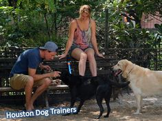 #Houston #Dog #Trainers - Justin spent countless hours working one-on-one with Nick White, owner of the globally recognized #dog #training business, Off Leash K9 Training.