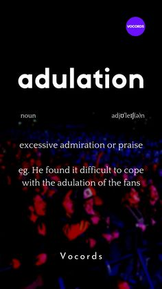 excessive admiration or praise is called adulation Interesting English Words, Unusual Words, Weird Words, English Phrases, Learn English Words, Words To Use, New Words, Good Vocabulary Words, Advanced English Vocabulary