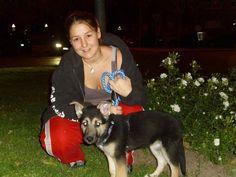 Thanys es una mezcla de pastor alemán, mastín y husky. En esta foto tiene dos meses y medio. Me la regalaron unos amigos, ya que llevaba años queriendo un perro. Me encanta esta iniciativa del día del perro sin raza.