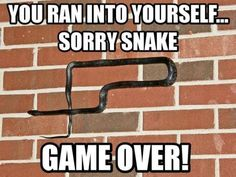 Game over snake // funny pictures - funny photos - funny images - funny pics - funny quotes - Snake Quotes, Funny Images, Funny Pictures, Funny Pics, That's Hilarious, Funny Geek, Snake Game, Dump A Day, Old Memes