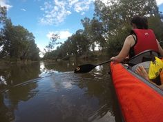 Kayak River Advanced Elements Inflatable Kayak on the Lachlan River. Cypress Swamp, Small Shark, Fishing Australia, Florida Springs, Merritt Island, Inflatable Kayak, Kayak Tours, Fish Camp, Kayak Fishing