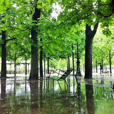 Embrace the Parisian Natural Beauty of the Tuileries Garden Paris Garden, Paris Architecture, Parisian, Natural Beauty, Armchair, Gardens, Outdoor Decor, Nature, Plants