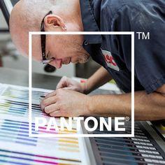 Video: La fábrica de color de Pantone