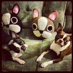 French Bulldog/Boston Terrier Pillow di peanutbutterdynamite