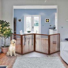 10 Outstanding Dog Room Divider Digital Image Ideas doggie doors