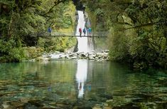 New Zealand Walks is your online travel guide to hiking in NZ. Choose from guided & freedom walking holidays, including the 9 great walks through National Parks. Milford Track, Milford Sound, New Zealand Tours, Great Walks, Best Hikes, Parks And Recreation, Oh The Places You'll Go, Where To Go, Trekking