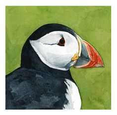 Colorful Puffin Watercolor Painting - Animal art - 5x5 Print. $12.00, via Etsy.