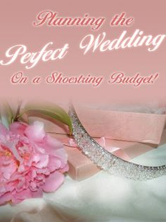 Throw a Dream Wedding on a Shoestring Budget (PLR)-Download This Ebook At: http://www.tradebit.com/filedetail.php/9186027-throw-a-dream-wedding-on-a-shoestring