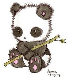 Panda Drawing - Try to draw l8r!!!