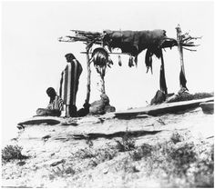 This is an example of a Blackfoot burial platform.