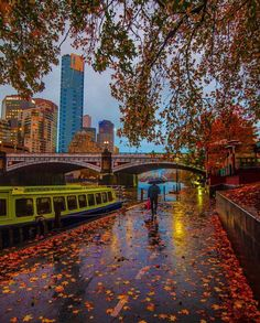 Autumn in Melbourne. Beautiful photo, thanks to the unknown photographer. Melbourne Victoria, Victoria Australia, Fall Photos, Dream Life, City, Places, Pictures, Travel, Image