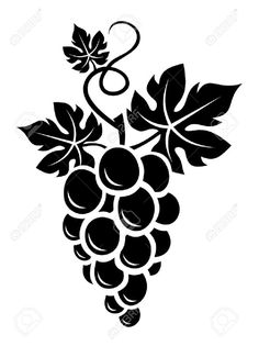 Illustration about Vector illustration of black silhouette of bunch of grapes with leaves. Illustration of pattern, curve, grapes - 29668494 Vogel Silhouette, Black Silhouette, Silhouette Design, Stencils, Stencil Painting, Fabric Painting, Quilling Patterns, Stencil Patterns, Stencil Designs