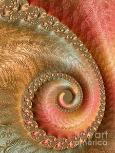 Sharing this delightful fractal with you by Heidi Smith!