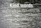 Kind words by Mother Teresa