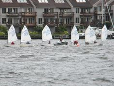dinghies sailing in Annapolis