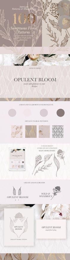 Floral Patterns & Illustrations by Laras Wonderland on @creativemarket