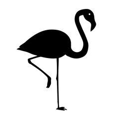 Flock folie flamingo