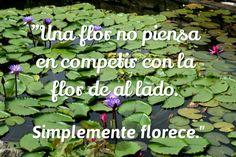 """""""Una flor no piensa"""