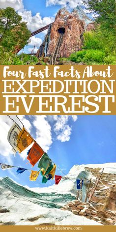 Walt Disney World's Expedition Everest is an iconic must do attraction found at Animal Kingdom in Orlando, Florida! Disney World Secrets, Disney World Rides, Disney World Florida, Disney World Planning, Walt Disney World Vacations, Disney World Tips And Tricks, Disney Tips, Disney Parks, Disney World Facts