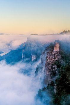 Mist in Sächsische Schweiz, Germany