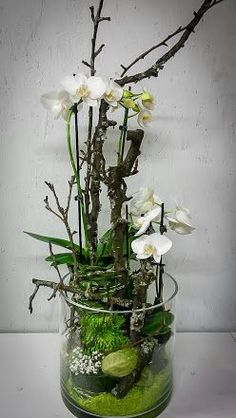 photo Source by Orchid Centerpieces, Orchid Arrangements, Ikebana, Deco Floral, Floral Design, Daffodil Bulbs, Artificial Orchids, Garden Bulbs, Floral Bouquets