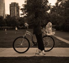 Off for a ride in Vancouver #bike #bicycle #dogs