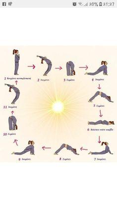 surya namaskar instructions  stepbystep guide to 12