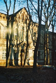 #плівка #35mm #безфільтрів #веснаприйде #zenit #kharkiv #urban #ukraine #ukrainianblog #inspiration #brick #streets #winterwalks #windows #architecture #city #building #view #SUN #shadows
