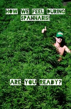 Did somebody say 🥬🌭🥬🌭🥬🌭🥬🌭🥬🌭🥬🌭 We are already thinking of what we're going to on weekend Weed Pictures, Weed Strains, Friday, Smoke, Feelings, Sayings, Movie Posters, Lyrics, Film Poster