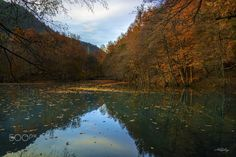 """Seven lakes(yedi göller) - The Yedigöller National Park (Turkish: Yedigöller, """"seven lakes"""") is located in the north of the Bolu Province, Turkey.  The park is best known for the lakes formed by landslides and for the rich plant life. There are beech trees, oaks, hornbeams, firs, spruces, alders and black pines etc. in the area.  Some of the wild animals living in the area are Red deer, Roe deer, Wild boar, Brown bear, Wolf, Red fox, Lynx, Jungle cat, Otter etc."""