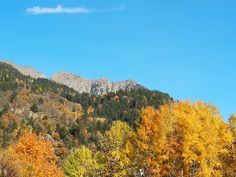Der goldene Herbst mit einem Bild erklärt