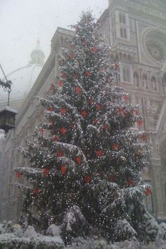 Christmas in Florence, Italy. this tree is gorgeous! Christmas Scenes, Noel Christmas, Christmas Photos, Winter Christmas, Christmas Lights, Christmas Decorations, Christmas In Italy, Italian Christmas, All Things Christmas