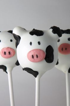 cow+cakes | Cow Cake Pops | Flickr - Photo Sharing!
