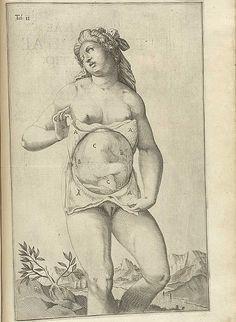 PLATES FROM SPIEGEL'S DE FORMATO FOETU LIBER SINGULARIS (1626)  Giulio Cesare Casseri, also known as Casserio