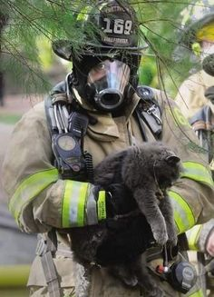 "According to People magazine, Tiki Bear the cat was carried out by firefighters from the burning house in Portsmouth, N.H., on Tuesday to the ""cheers of onlookers."""