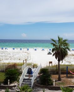 78 Best Hampton Inn Pensacola Beach Images In 2019 Hampton Inn