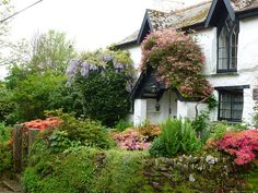 Charming cottage garden in Cornwall England