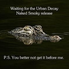 Meme RoundupUDers, we love how stoked you are for Naked Smoky. These are a few our favorite memes you guys sent our way -