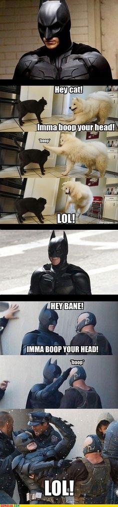 i don't know why this made me laugh so hard, maybe the expression on Batman's face. HAHAHA