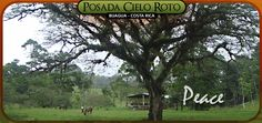 if you're in Costa Rica, this is an awesome place to go, literally in the middle of nowhere, beautiful and peaceful, close to Rio Celeste, $55 per night and includes 3 meals a day!!