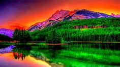 nature photography - Yahoo Image Search Results
