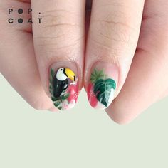 : TROPICAL :  4D toucan doll with handpainting leaves and flower background.  Appointment only!  - Text me for menu and price  - Line : vionaparamita  - Whatsapp : +6287851960441  - Studio : pesanggrahan, jakbar  - Available for homeservice  #popcoatnails