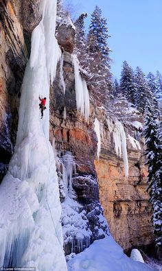 ICE CLIMBING!  (wow, I wouldn't do it but would love to visit this place, on the ground)