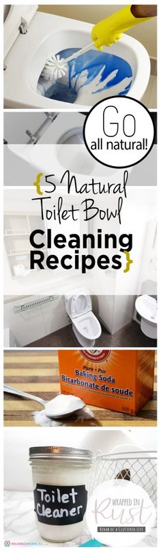 Go All Natural! {5 Natural Toilet Bowl Cleaning Recipes} Natural Cleaning Recipes, Cleaning Recipes, Cleaning Tips and Tricks, Cleaning Hacks, Homemade Cleaners, Handmade Cleaning Recipes, Homemade Cleaning Recipes, Chemical Free Cleaning Recipes Call today or stop by for a tour of our facility! Indoor Units Available! Ideal for Outdoor gear, Furniture, Antiques, Collectibles, etc. 505-275-2825