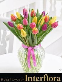 Happy Birthday Mixed Tulip Vase