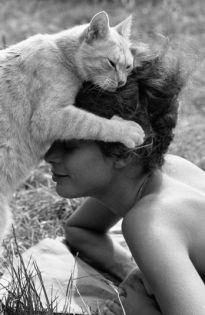 Chats... et autres animaux - Pierre Jamet