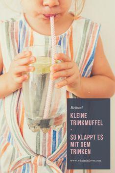 Trinkt dein Kind genug? Und wieviel ist dieses 'genug'? Was ein Kind trinken sollte und in welcher Menge, plus Tips & Tricks, wie ihr euer Kind zum Trinken animieren könnt, erfahrt ihr auf meinem Blog! #beikost #familientisch #babybrei #blw #babyledweaning Baby Led Weaning, Tips & Tricks, Glass Of Milk, Baby Kids, Blog, Posts, Babies, Recipes For Toddlers, Kid Recipes