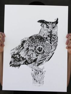 """Owl"" Art Print by Rghayati"