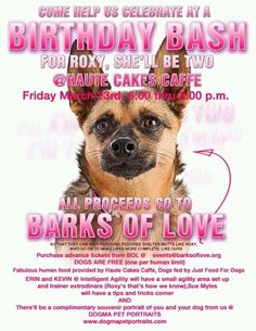 Join us for a Birthday Bash!  Haute Cakes food, free Dogma Pet Portrait, Dog food by JustFoodForDogs, Intelligent Agility and MORE!  Email events@barksoflove.org for ticket info.    DOGS ALLOWED!
